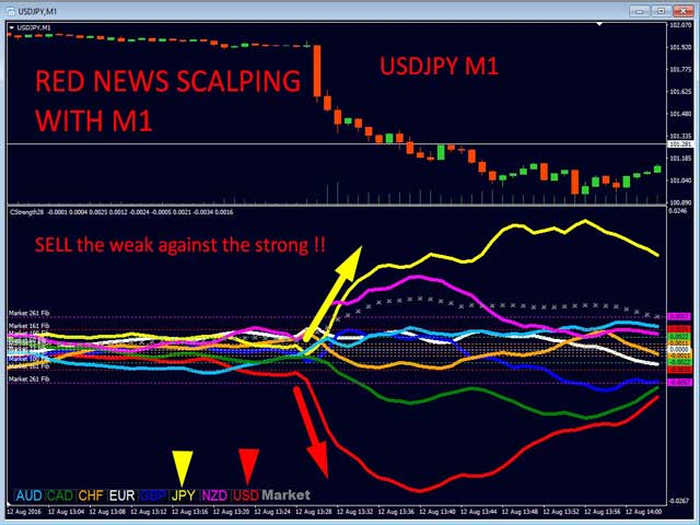 Best Online Trading Tips & Advice